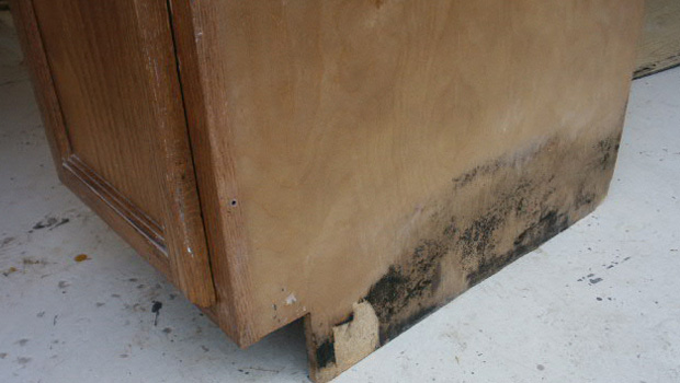 get-rid-of-mold-kitchen-furniture-cabinets-drawers