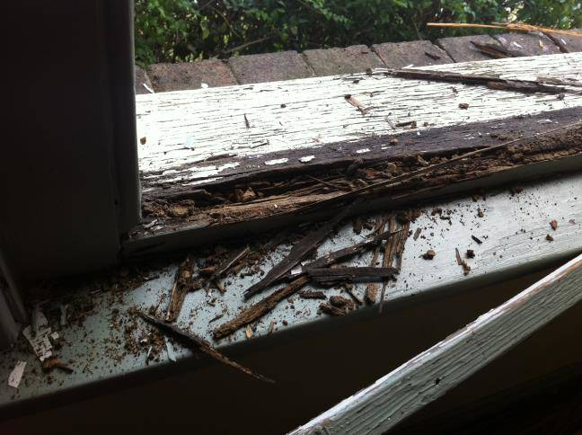 destroyed-rotting-wooden-window-frame-needing-replacement